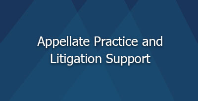 APPELLATE PRACTICE AND LITIGATION SUPPORT